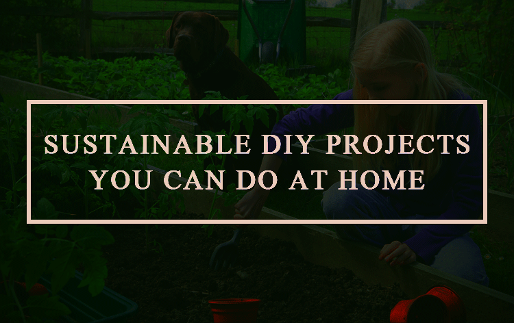 Sustainable-DIY-Projects-You-Can-Do-at-Home