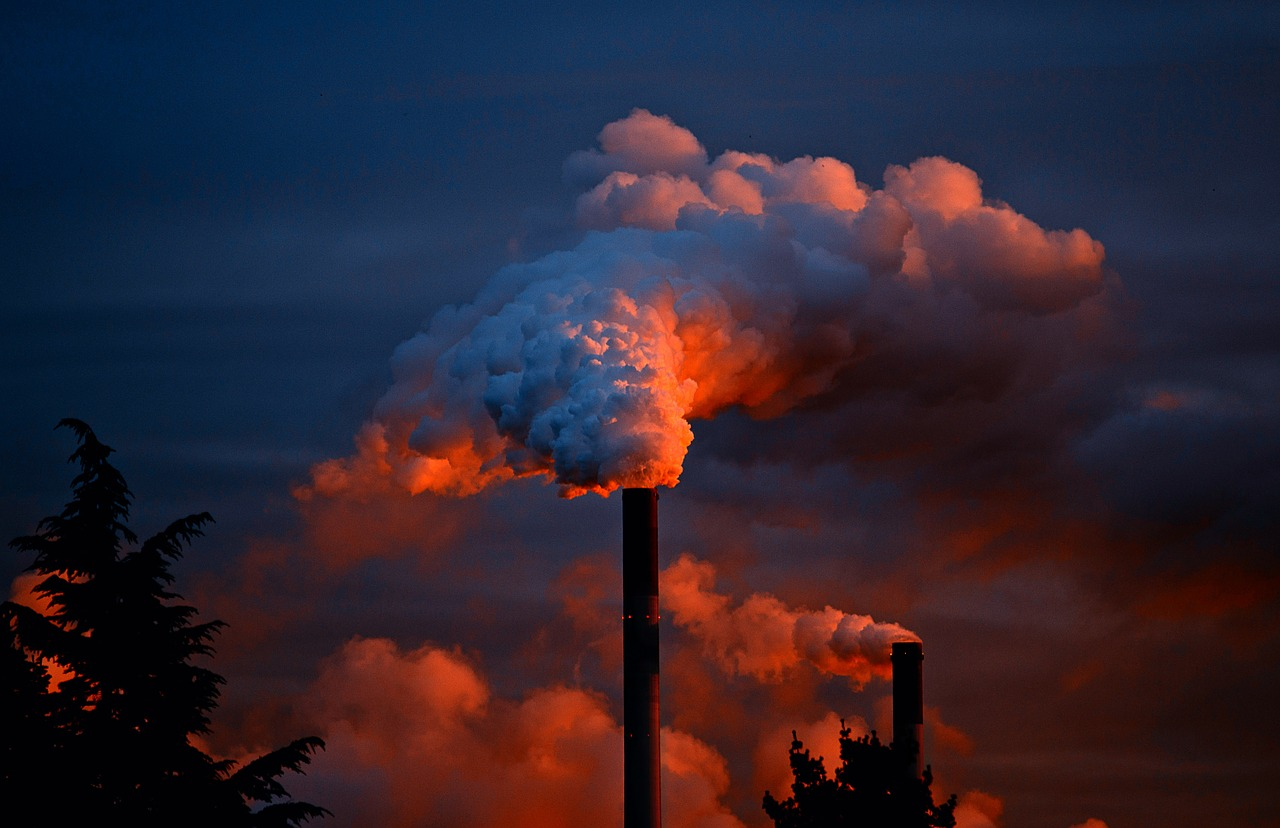 What's up with carbon emissions?