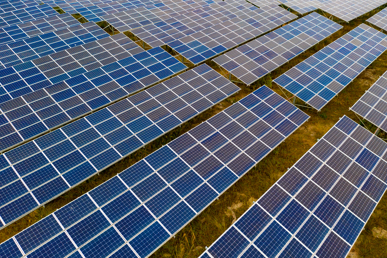A large number of solar panels scattered and organized in a field