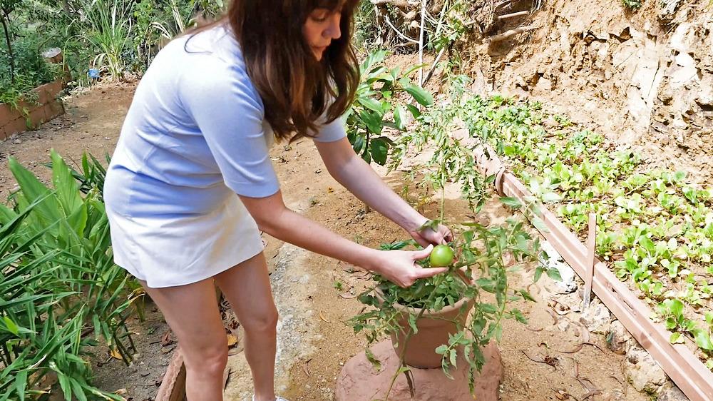 Establishing Your Own Home Garden